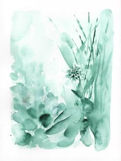 Crocosmia: Sage Green