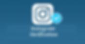 Instagram Verifcation Badge.png