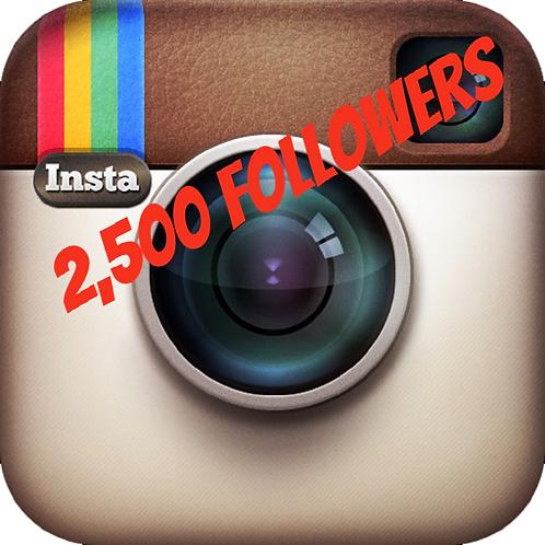 2,500 Instagram Followers