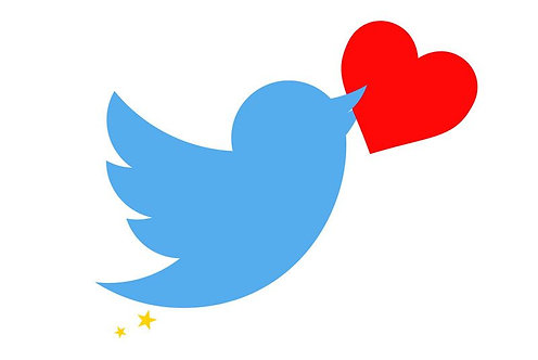 25,000 Twitter Likes