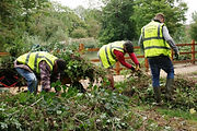 Mars-Wrigley Volunteers clearing unwanted vegetation from the lake embankment in Eastfield Park Northampton