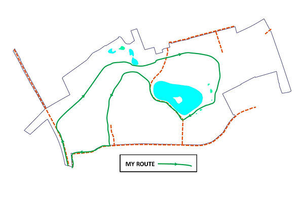 Walking route in park