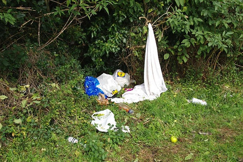 Dumped rubbish: Flytipping