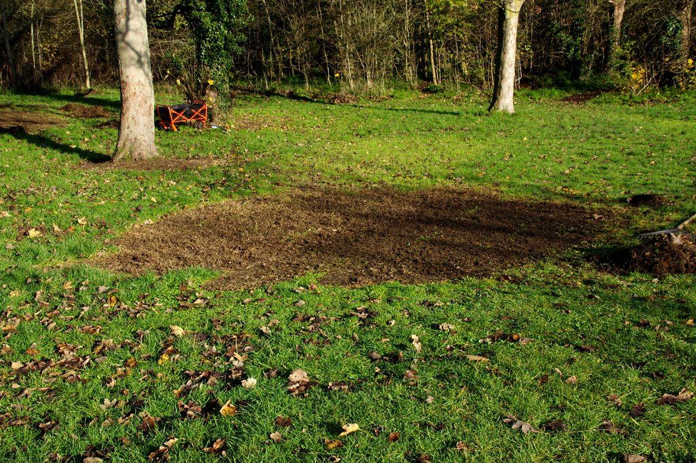 Part of Eastfield Park meadow extension prepared for seeding