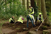 Team of Volunteers from Nationwide Building Society working on Crescent Rock Garden in Eastfield Park Northampton