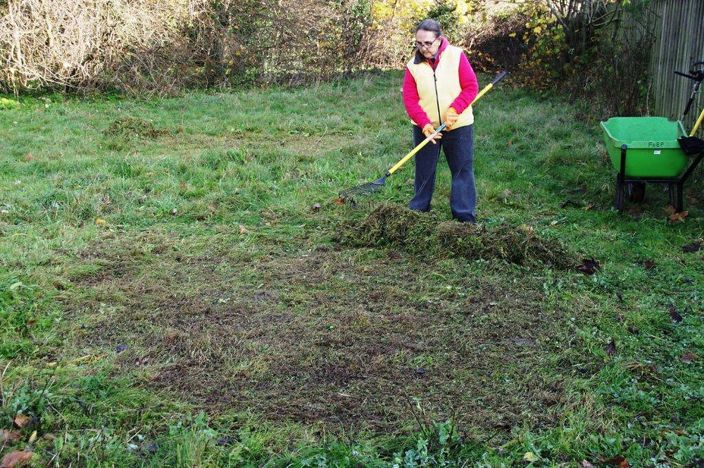 Eastfield Park: Areas prepared for seeding in orignal 'seeded meadow' and neighbouring set-aside, Nov. 2020