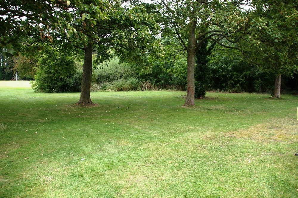 Area for Eastfield Park meadow extension, Septempber 2019
