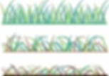Grass.webp