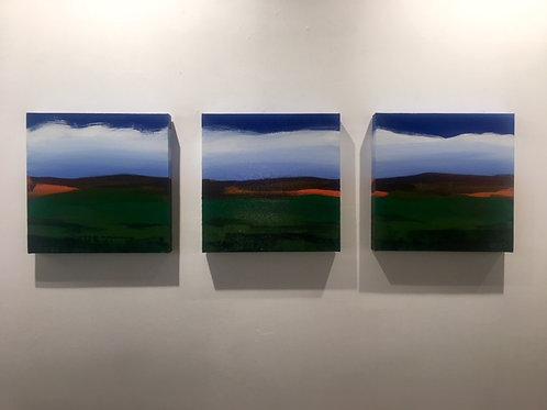 Landscape Series #2013 A, B, C (triptych)