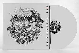 vinyl-records-mastering-012.jpg