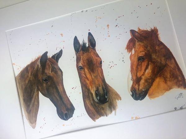watercolour horse painter