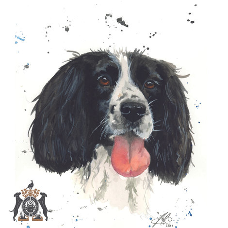 dog in watercolour art