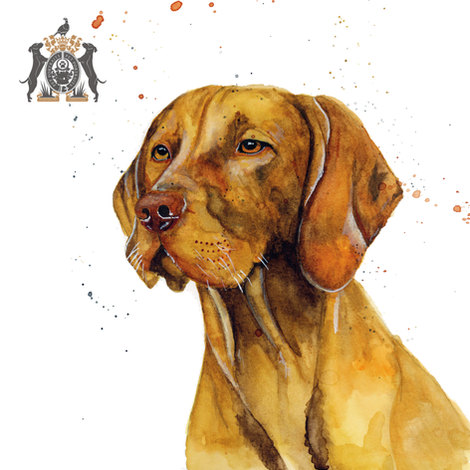 dogs in watercolour commissions