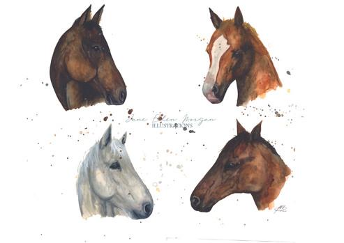 watercolour horse artist