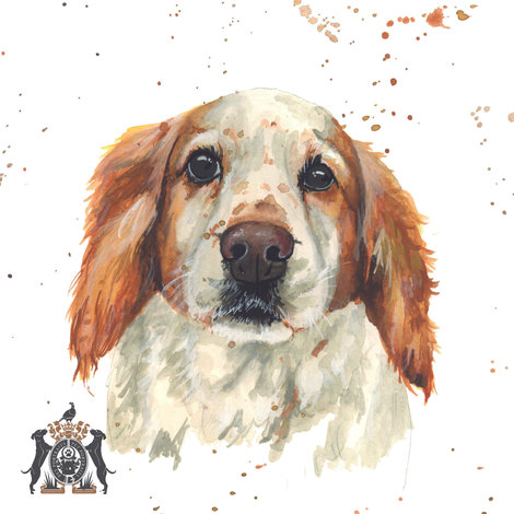dog in watercolour commissions