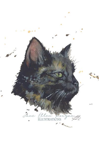 cat watercolour artist