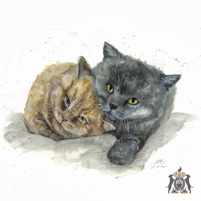 cats in watercolour