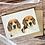 Thumbnail: Beagle Duo