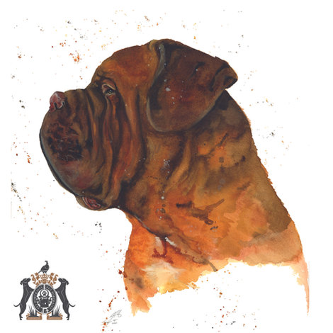 dogs in watercolour a