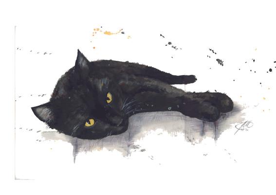 cat watercolour painting