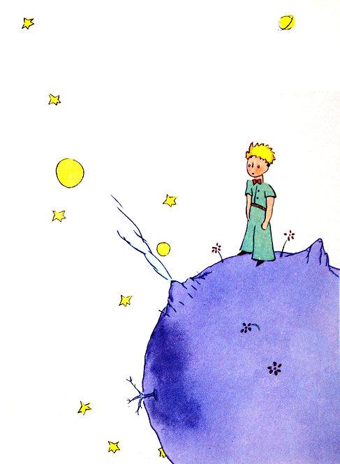 Der Kleine Prinz Schauspiel - Video