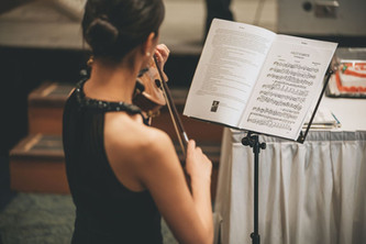p-7 Violin.jpeg