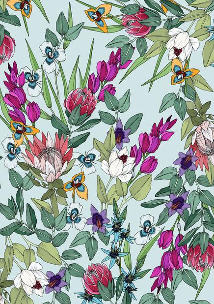 South African Flora : World Botanica Series