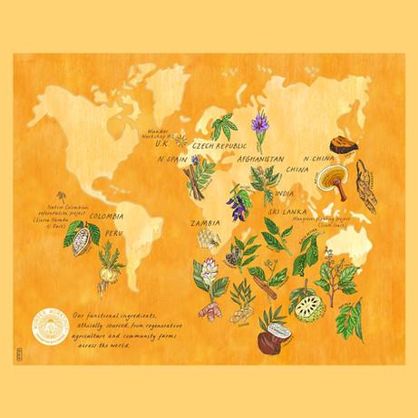 Wunder Workshop Map Of Ingredients