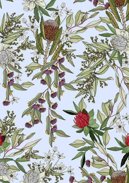 Australian Flora : World Botanica Series