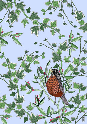 Robin in The Evergeen