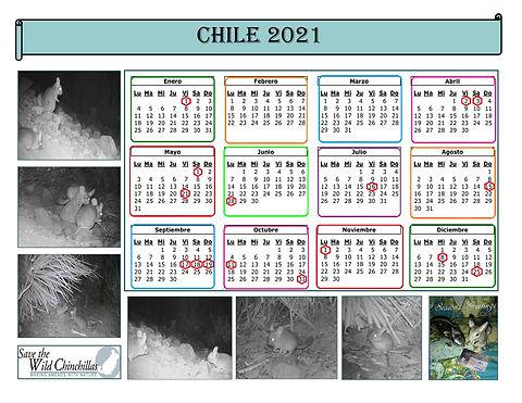 2021_calendar_chile_esp.jpg