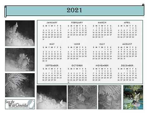 2021_calendar.jpg