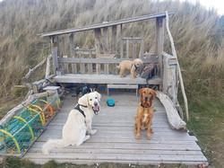 The Clan at Gullane