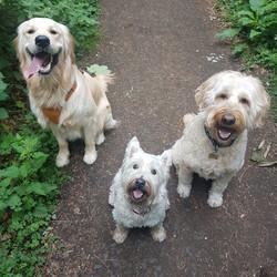 smiling trio - Copy - Copy