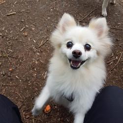 daisy smiling