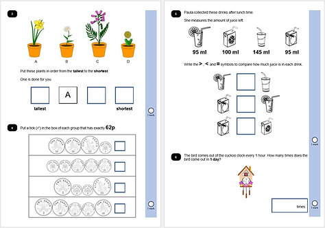 KS1 Year 2 SATs practise papers EDITABLE
