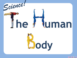 Parts of the Body (Animals) PPT