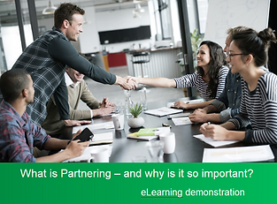 partnering elearning demo pic.png