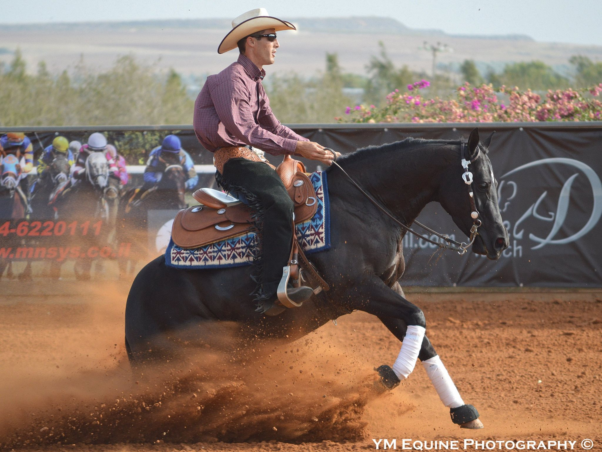 Docs Star Benz - 2015 Futurity