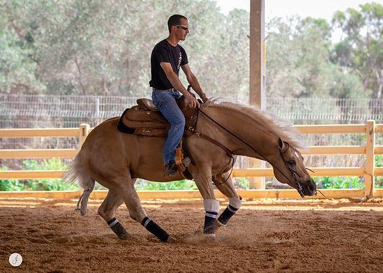 Kaya Ahissar Reining Trainer