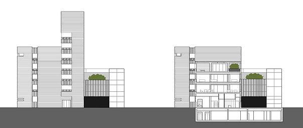 Alzado y seccion arquitctónicos