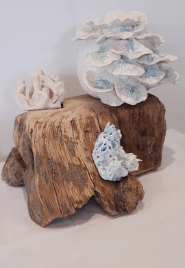 Earthenware mounted on wood