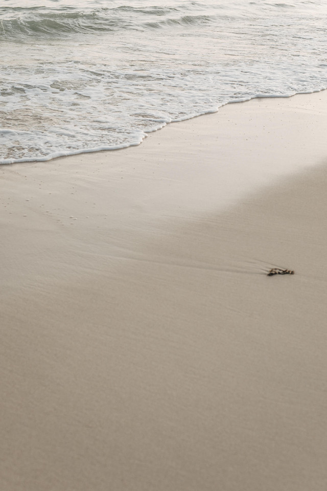 nomades-beach-63.jpg