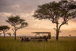 Singita_4x4_bush_sunset.jpg