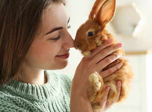Young woman with adorable rabbit indoors