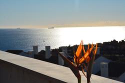 Lever de soleil depuis la terrasse
