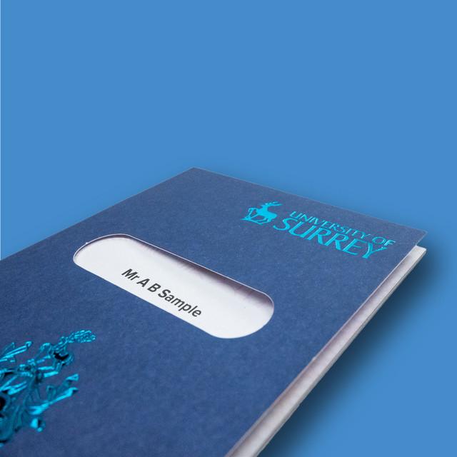 University of Surrey - Passport To The Future