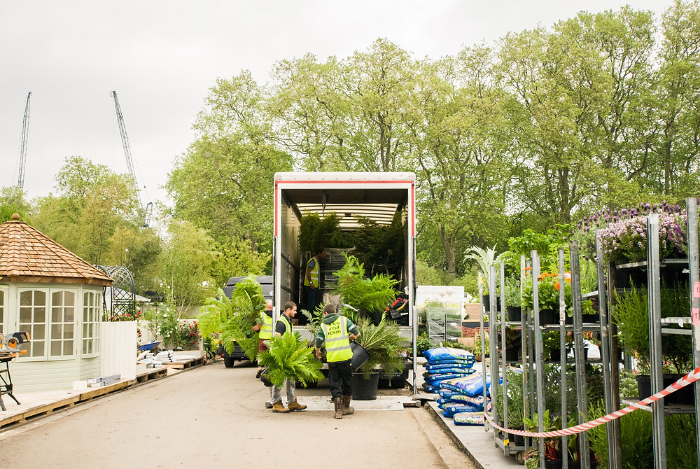 Behind the scenes at Chelsea Flower Show (2016) by Georgina Cook
