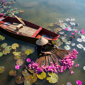 Exclusive 15-day privately guided group tour to Vietnam and Cambodia