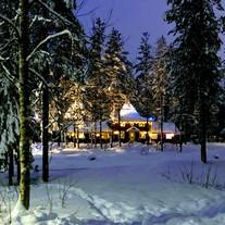 Client Blog: Jo's family Lapland adventure